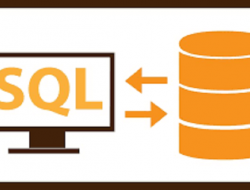 SQL – Distinct Sorgusu
